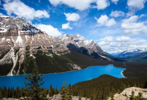 Peyto Lake Kanada