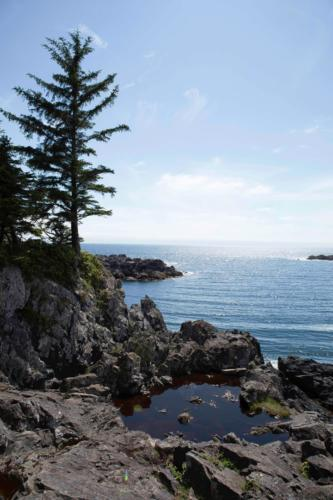 Telegrapf Cove Vancouver Island