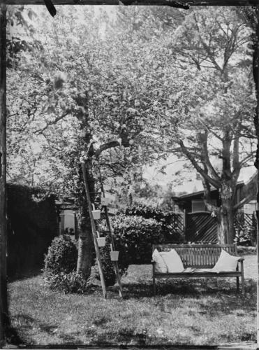 Bank unter Apfelbaum