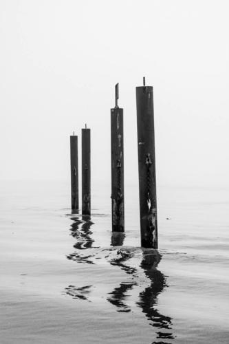 Elbe im Nebel